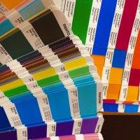 【PAIKAJI ブログ vol.6】色の世界は素晴らしい